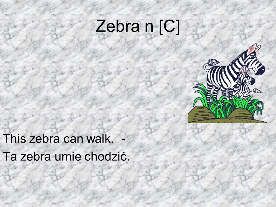 Zebra n [C] This zebra can walk. - Ta zebra umie chodzić.